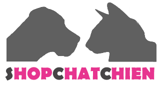 Shopchatchien